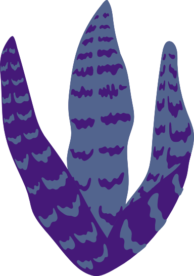 Abstract Snake Plant