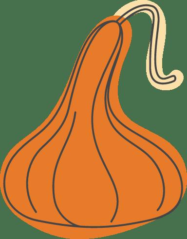 Autumn Long Neck Squash