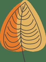Autumn Broad Leaf