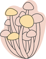 Autumn Mushroom Bunch