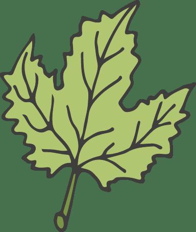 Hop Leaf