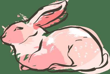 Regal Bunny