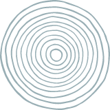 Concentric Circle Texture