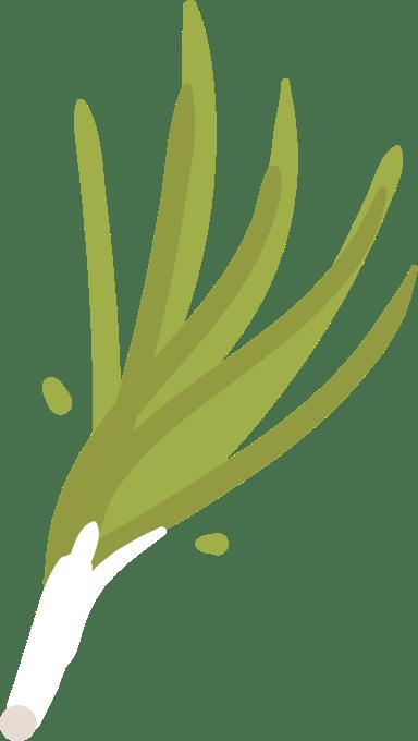 Basic Radish