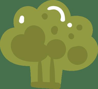 Basic Broccoli