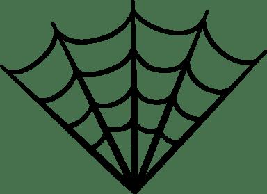Angled Spider Web