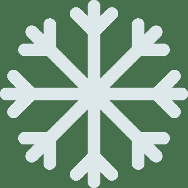 Brisk Snowflake