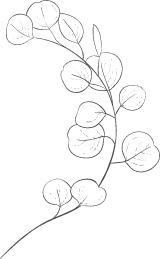 Stemmed Round Leaves