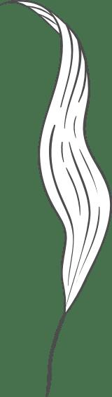Swirled leaf