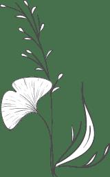 Plain Gingko Arrangement