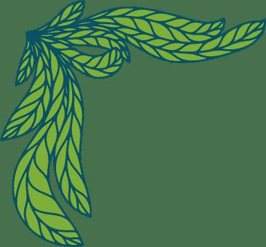 Succulent Flourish