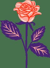 Long Stem Rose