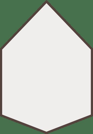 Symmetrical Hexagon