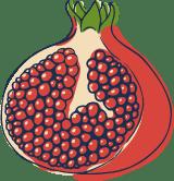 Sketched Pomegranate