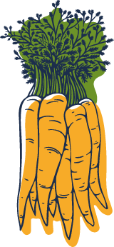 Sketched Carrots