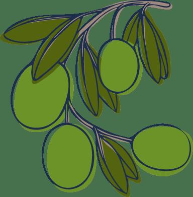 Sketched Olives
