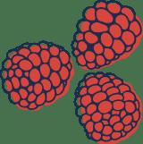 Sketched Raspberries