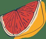 Sketched Grapefruit