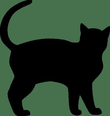 Poised Cat