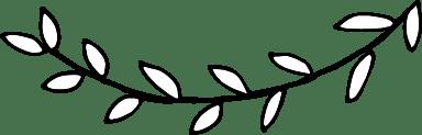 Willowy Branch
