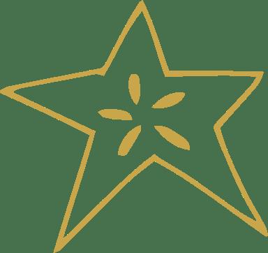 Seeded Starburst
