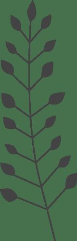 Nordic Pine Branch