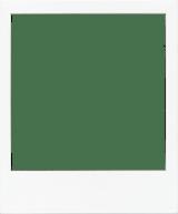 Pristine Polaroid Frame