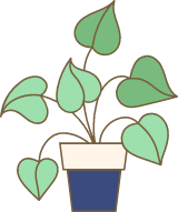 Potted Ivy Plant