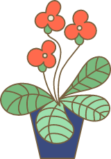 Potted Blooming Fronds
