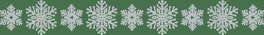Large Snowflake Border