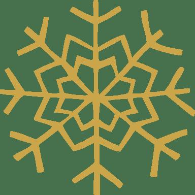 V-Shaped Snowflake
