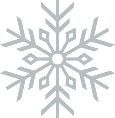 Prickly Snowflake