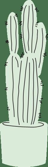 Potted Cereus Cactus