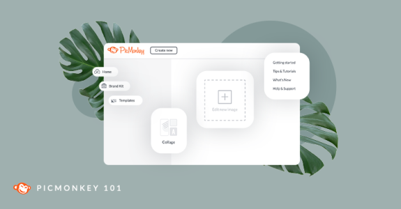 PicMonkey 101 video tutorials to get you started