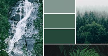 Des palettes de couleurs pleines d'inspiration