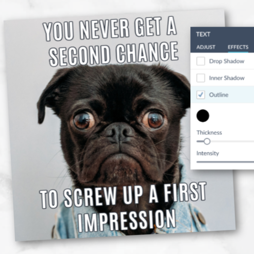 """Meme design with sad dog and text """"You never get a second chance to screw up a first impression."""""""