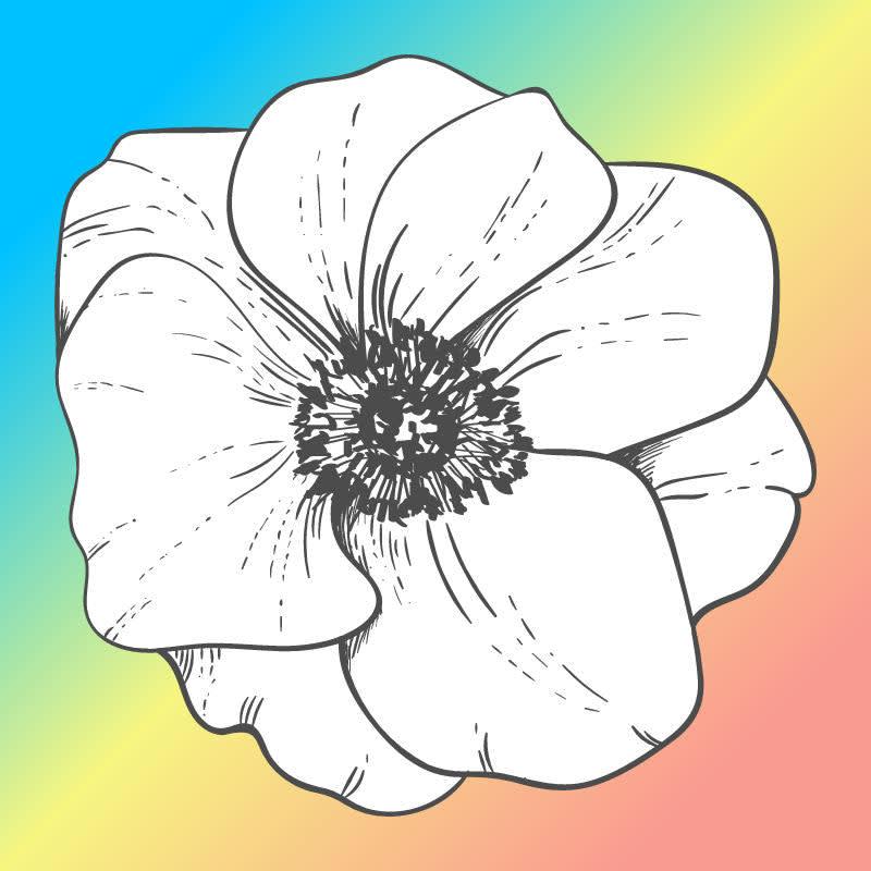Flower graphic against rainbow color gradient background.