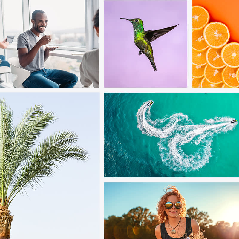 Access millions of royalty-free Shutterstock photos with a PicMonkey subscription.