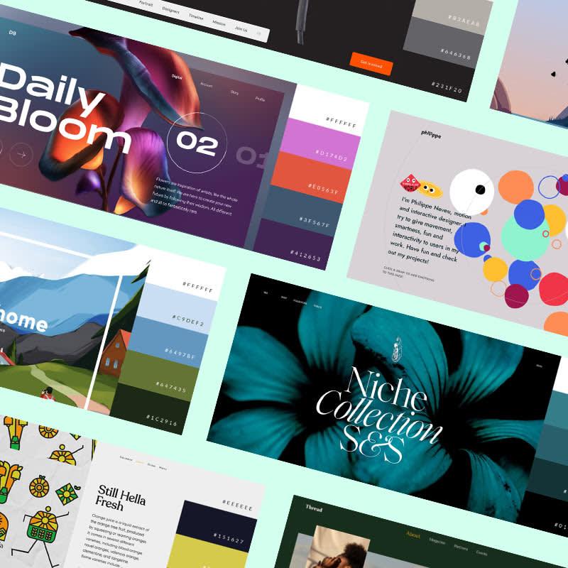 30 Website Color Schemes 2021