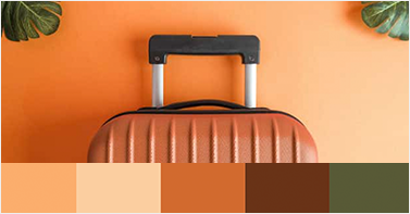 Make a Brand Color Palette