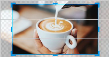 crop images with precision in picmonkey